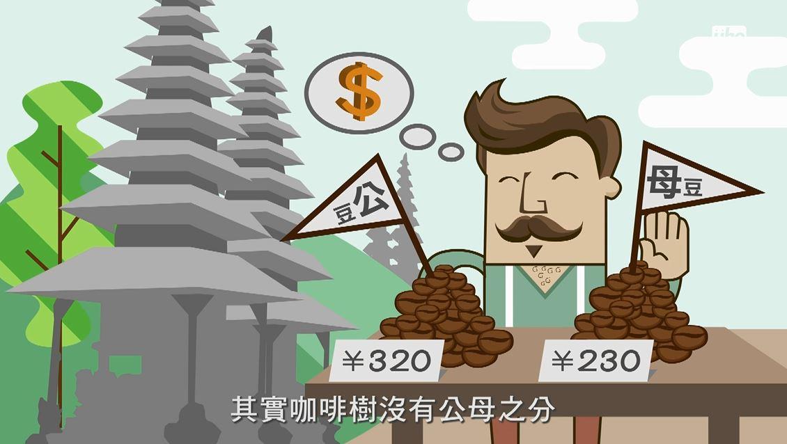 其實是印尼為了賺觀光客的錢,故意把咖啡豆分成公豆母豆